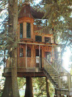dreamy tree houses