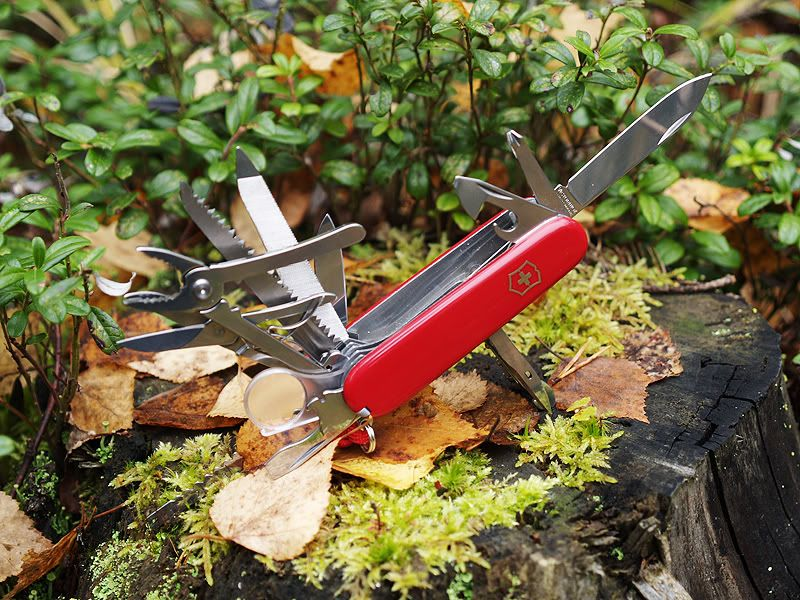Knives Ranger S Apprentice