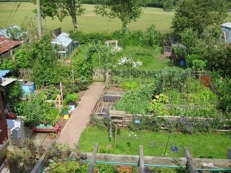 Permaculture Garden | Farm | Pinterest | Gardens, Forests And Projects