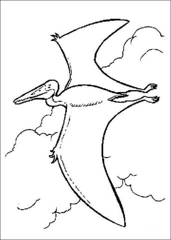 Pterodactyl Is Flying Coloring Page From Dinosaur 2000 Category