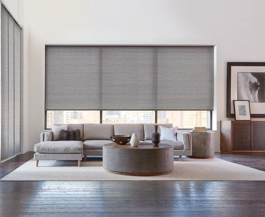 Living Room Window Treatment Inspiration Modern Traditional And Transitional Win Window Treatments Living Room Living Room Blinds Roller Blinds Living Room