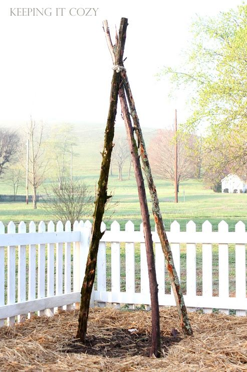Keeping It Cozy:  Cedar Poles in the Garden