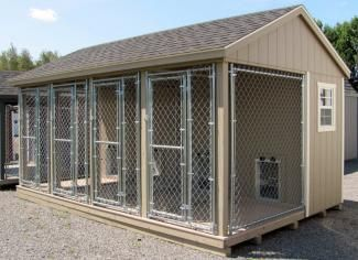 Beau 10x16 Dog Kennel | Adirondack Storage Barns Dog Shedding, Dog Shower, Barn  Storage,