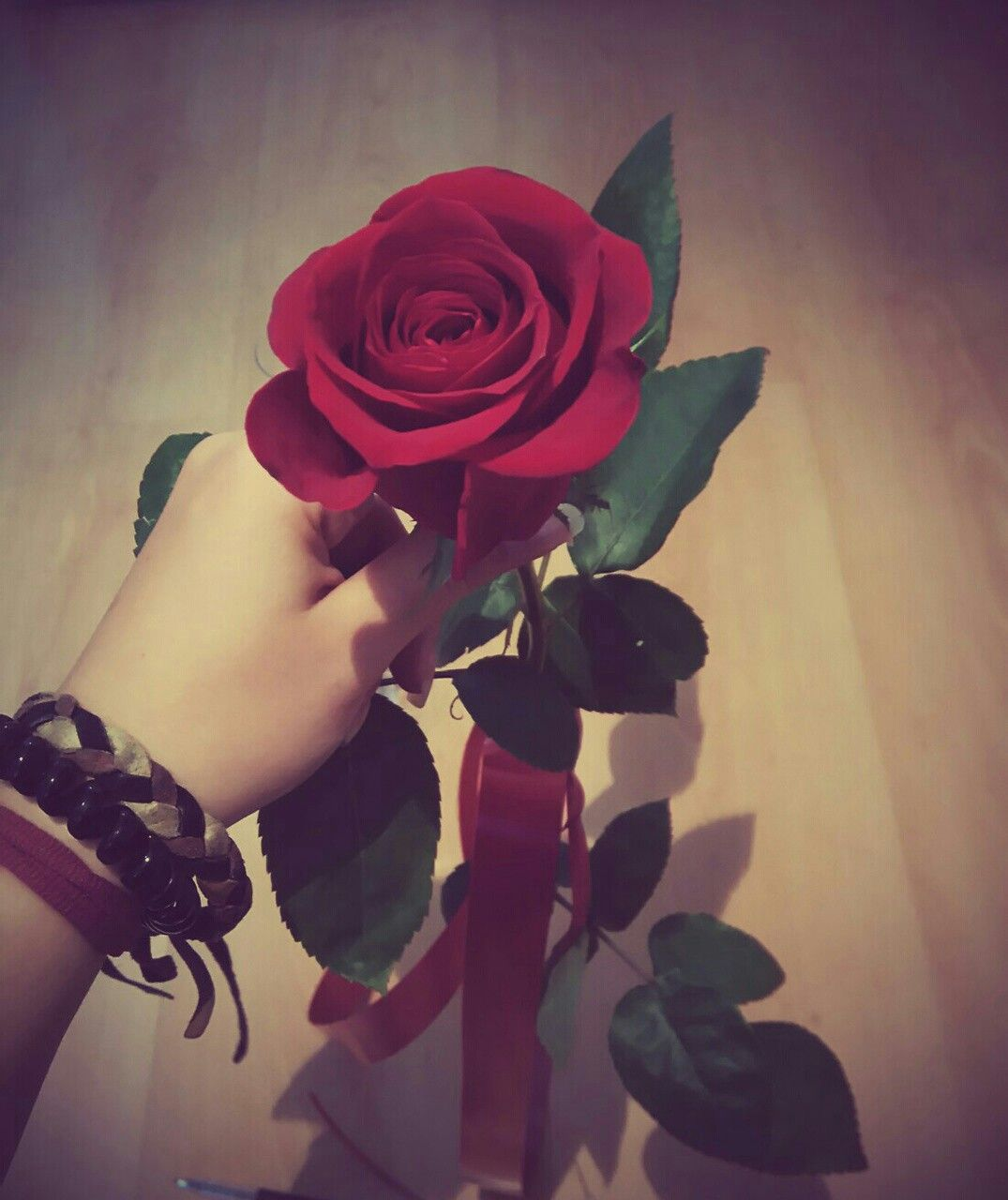 Pin By Sanashah On Dpzzzz Red Rose Flower Good Afternoon My Love Girls Hand