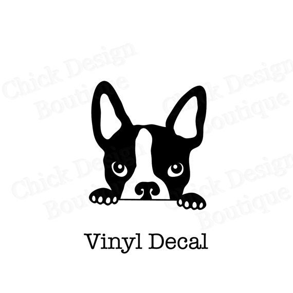 Boston Terrier Peeking Vinyl Decal Terrier Dog Breeds And Pup - Custom vinyl decals boston