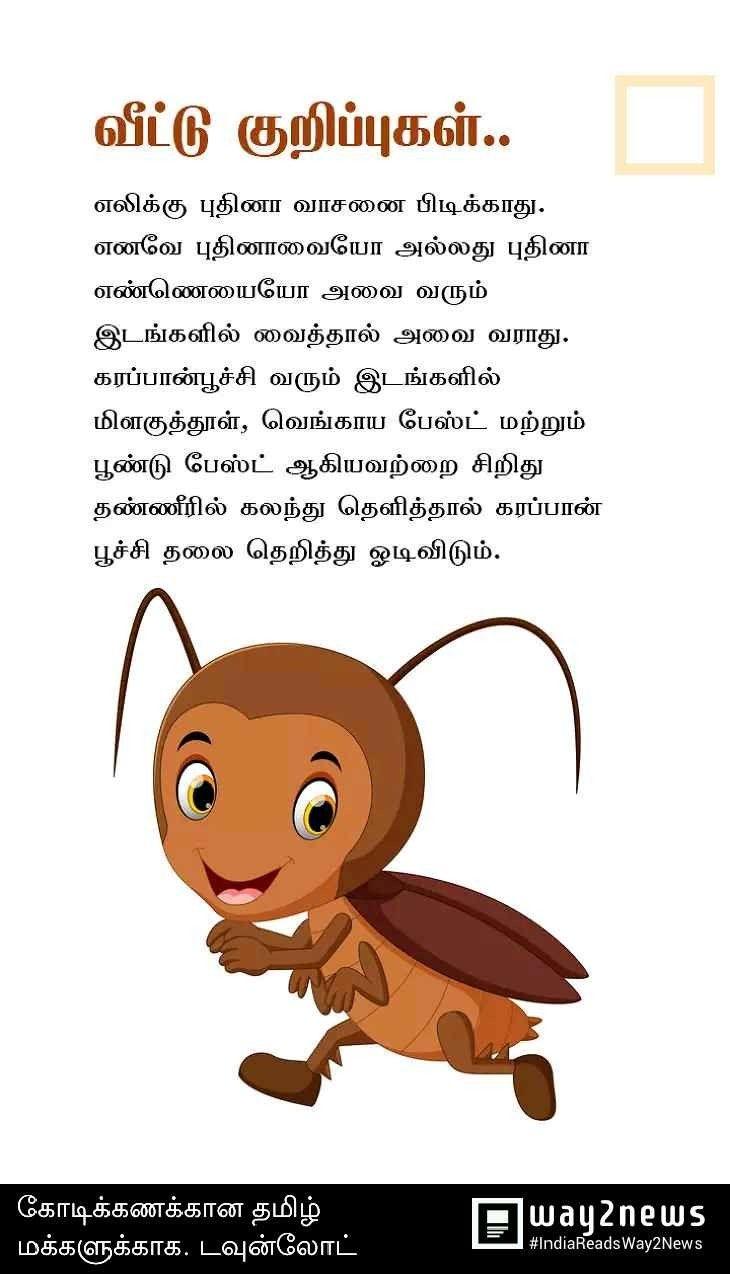 Tamil Tips Natural Health Tips Fruit Health Benefits Natural Health Care