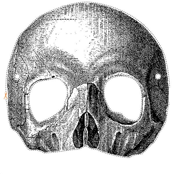 Who Wouldn T Want A Printable Template For A Skull Mask Halloween Masks Halloween Printables Free Scary Halloween