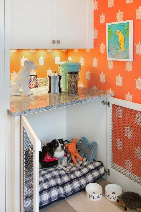 Dog Friendly Laundry Room Features White Cabinets Mounted Against A Wall Covered In Orange Turtle Print Wallpaper Above Gray Granite Countertop Fixed Over