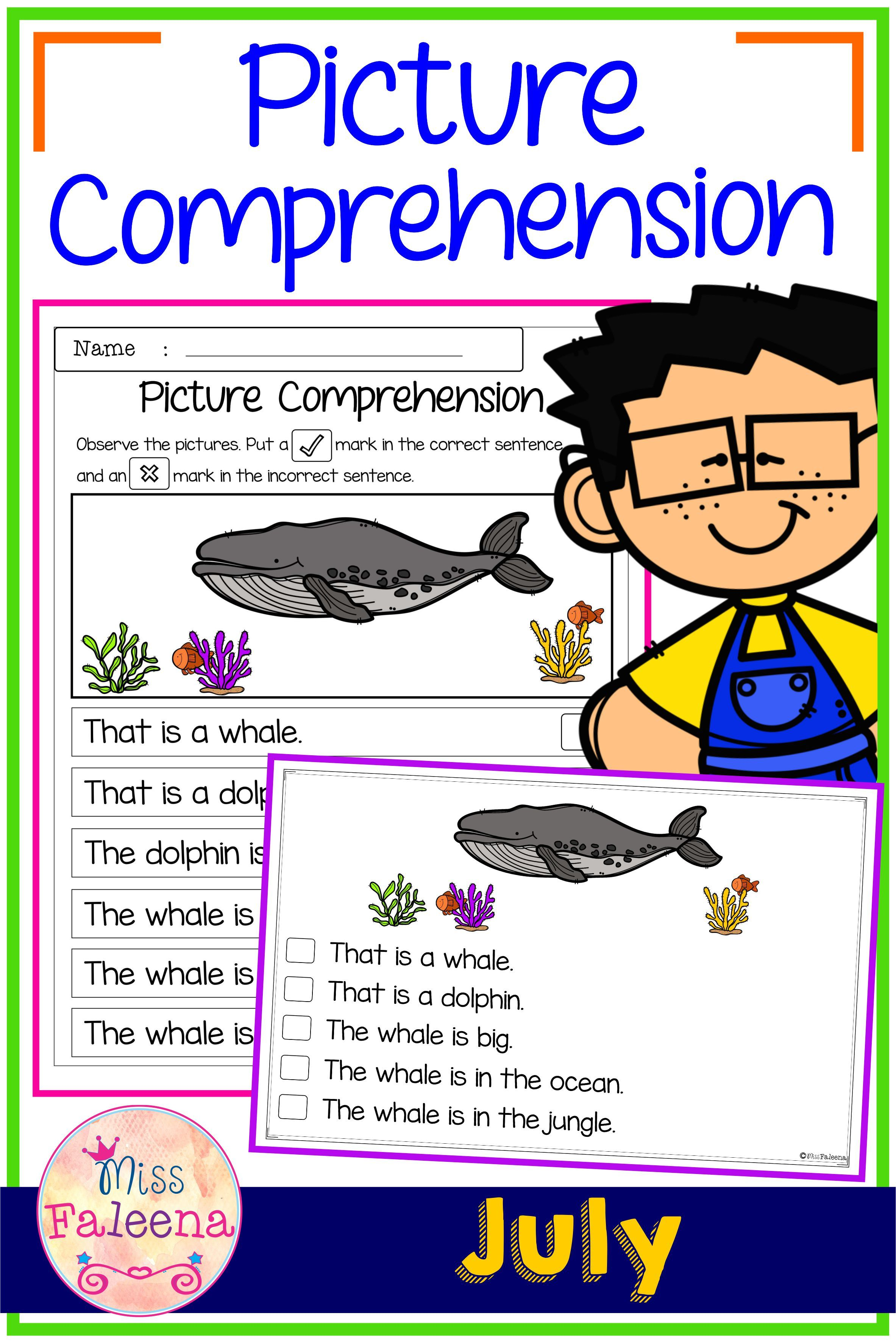 July Picture Comprehension Cards And Worksheets Di