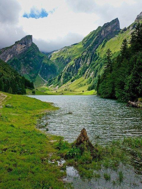 Appenzell, Switzerland: #landscapingtips