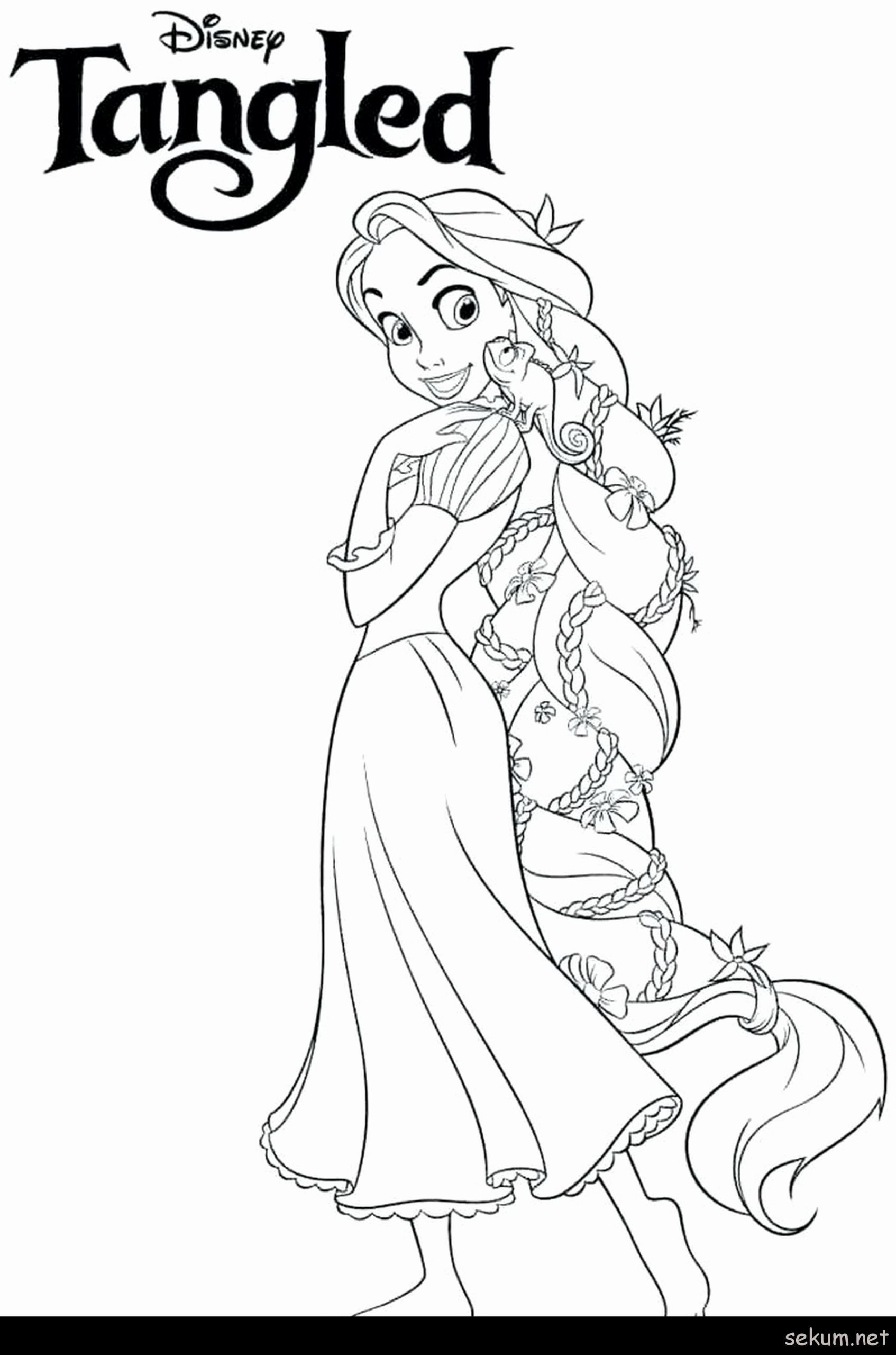 Moana Colouring Pages A4 You'll Love