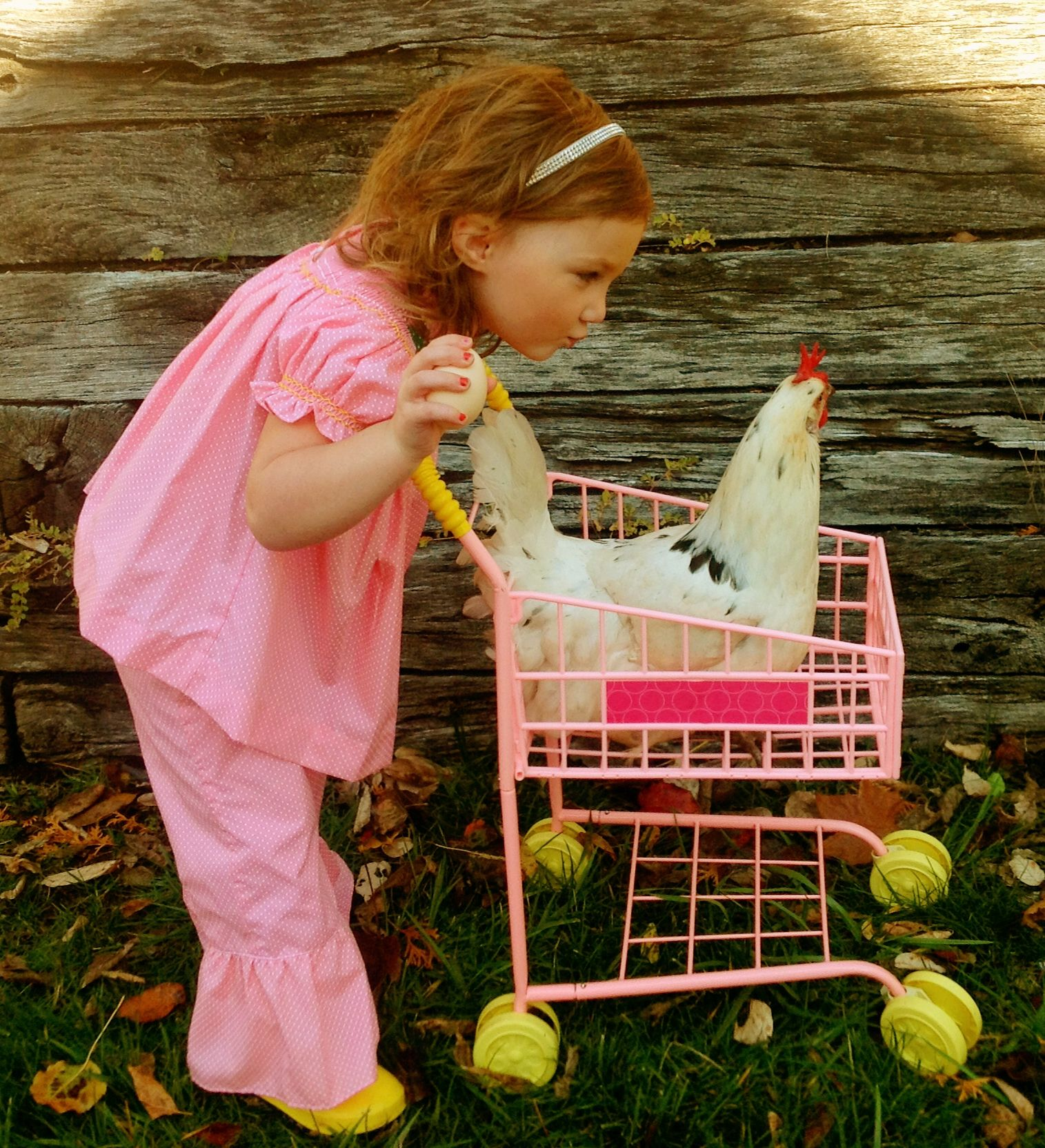 taking your chicken for a ride in your tiny pink shopping cart