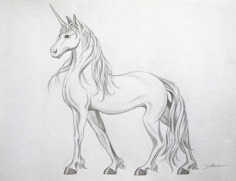 Malerei Dillenia Einhorn Zeichnung Pferd Einhorn Zeichnung Einhorn Zeichnen Einhorn Tattoo