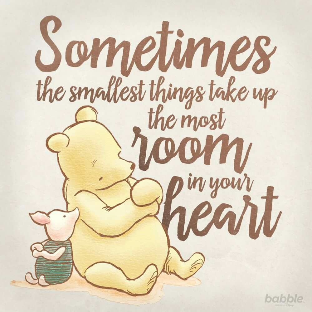 Pooh Love Quotes Sometimes The Smallest Things Take Up The Most Room In Your Heart