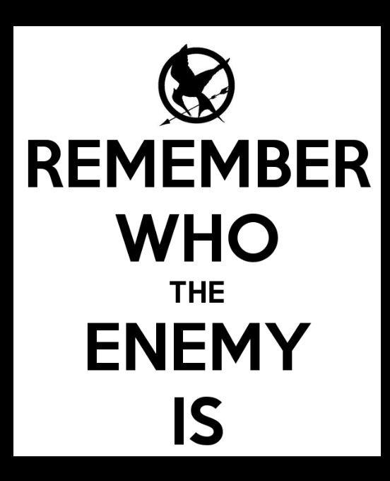 """""""Remember who the real enemy is."""" In het Nederlands: Onthoud wie de echte vijand is. Dit is een quote uit het boek die me bijgebleven is. Ik vind het chique gevonden van de schrijfster en ook op het juiste moment gebruikt: Wanneer Katniss midden in de hongerspelen zit omringd door vijandelijke tributen, herinneren haar vrienden haar eraan dat zij niet haar vijanden zijn. Het Capitool is de echte vijand, de reden waarom Katniss met dit alles begonnen is."""