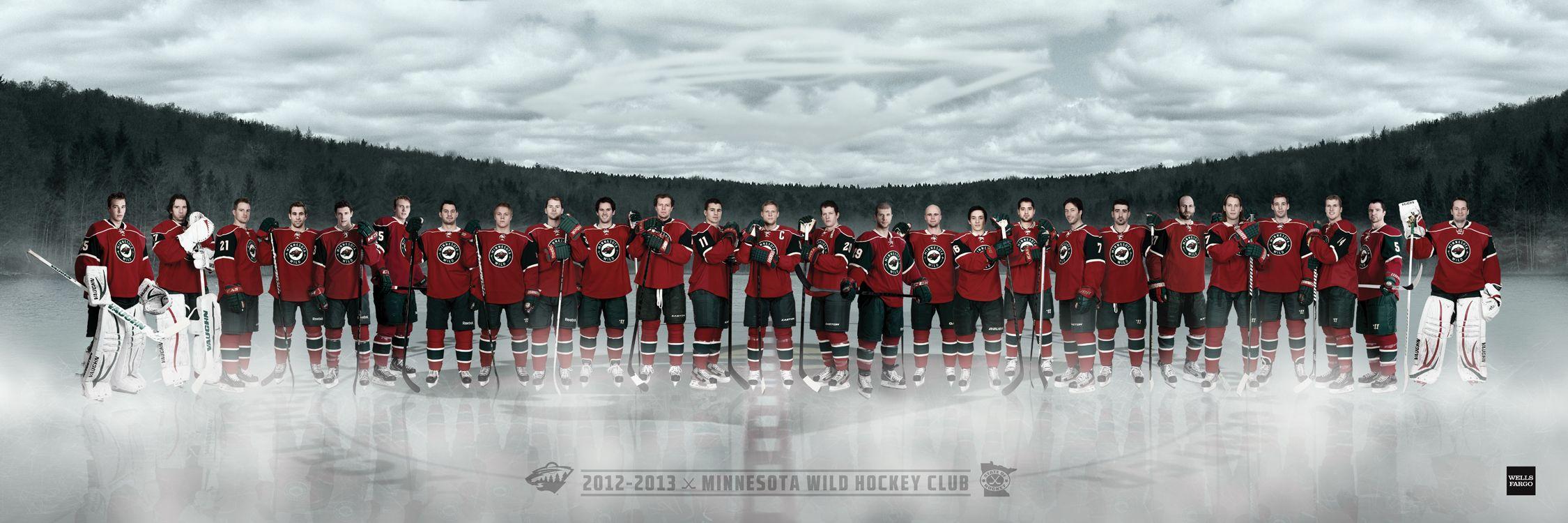 minnesota wild hockey minnesota wild