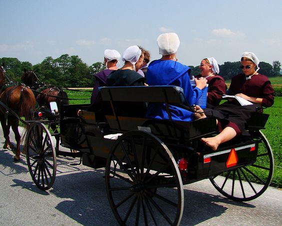 amish people buggies of the pennsylvania dutch country steve s  amish people buggies of the pennsylvania dutch country steve s