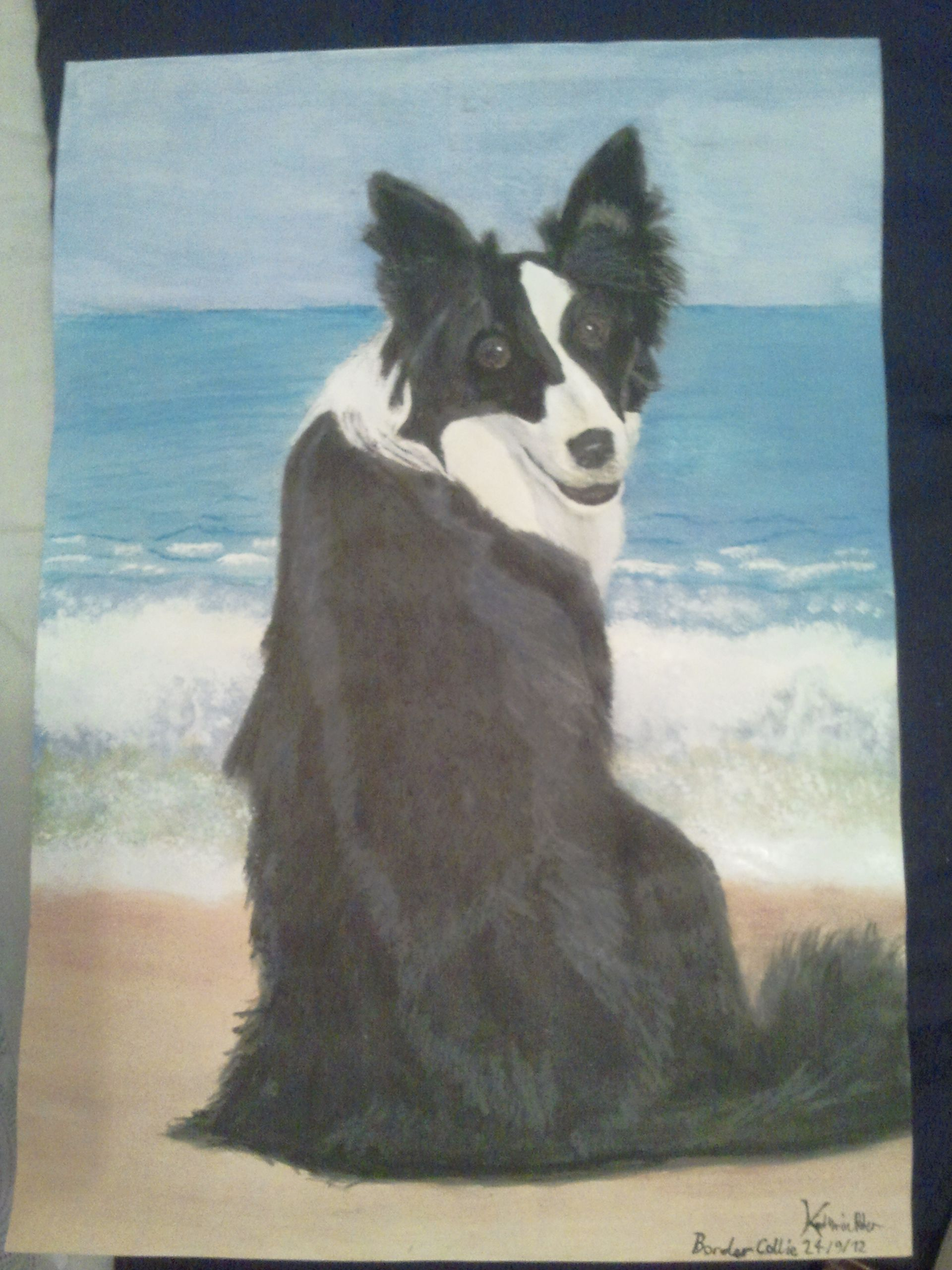 Border Collie On Beach 2012 Drawings Painting Art