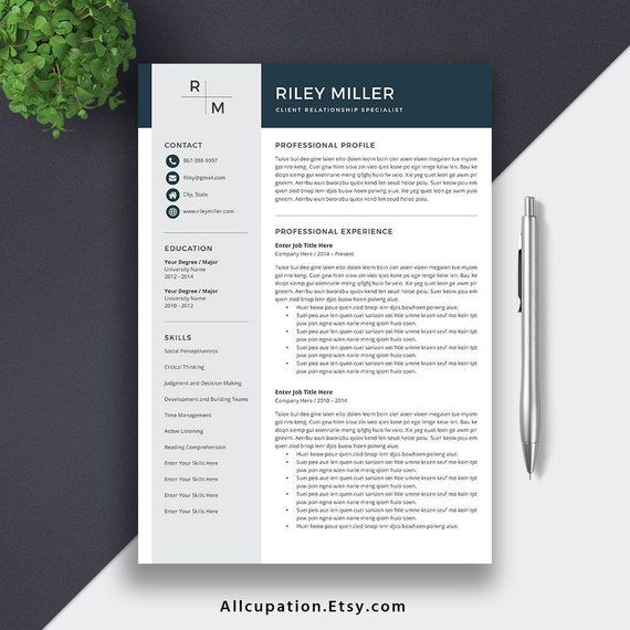 2019 Resume Template For Word CV Professional