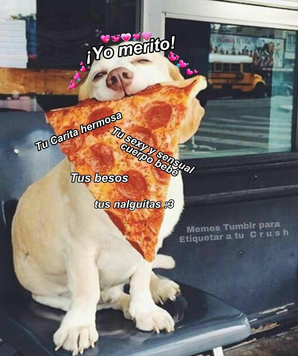 Bien Ricarda Amor Animales Frases Memes Para Mi Novio
