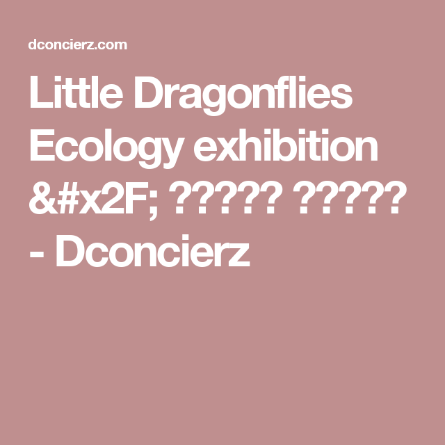Little Dragonflies Ecology exhibition / 꼬마잠자리 생태학습관 - Dconcierz