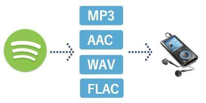 Spotify Musik In Mp3 Aac Wav Flac Umwandeln Herunterladen