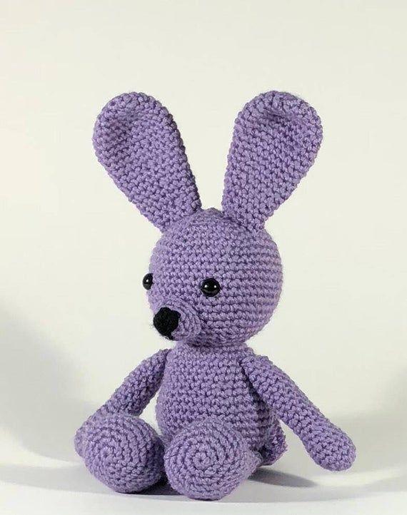 Crochet Bunny, Amigurumi Bunny, Amigurumi Rabbit, Crocheted Bunny, Plush Bunny, Bunny Plush, Easter Bunny, Easter Basket Gift, Gift for Kids #bunnyplush