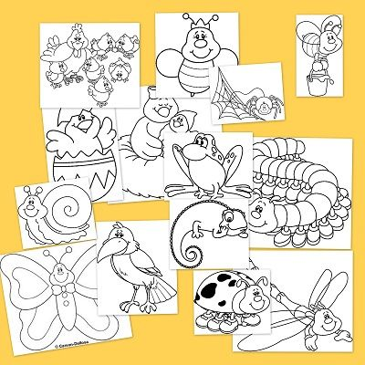 Primavera de animales para colorear | Coloriage | Pinterest | De ...