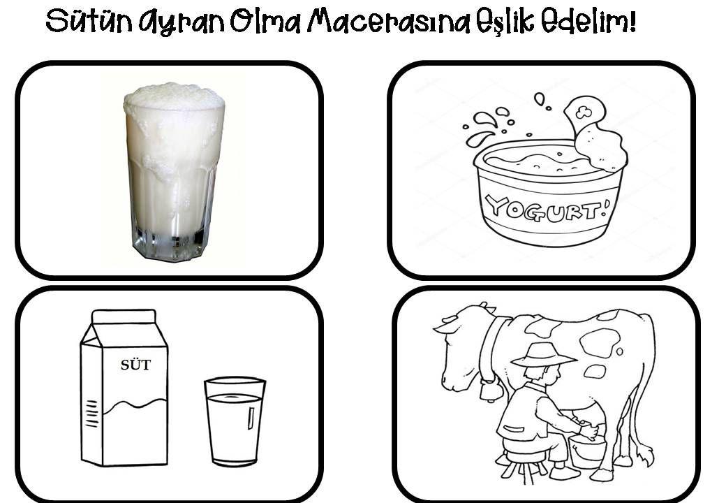 Sütün Ayran Olma Macerası Alimentazione Science For Kids