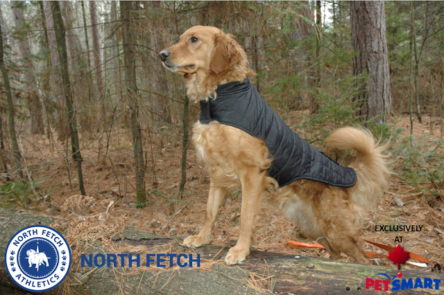 North Fetch Dog Apparel At Petsmart Canada Paws For Reaction Dogs Winter Dog Dog Clothes