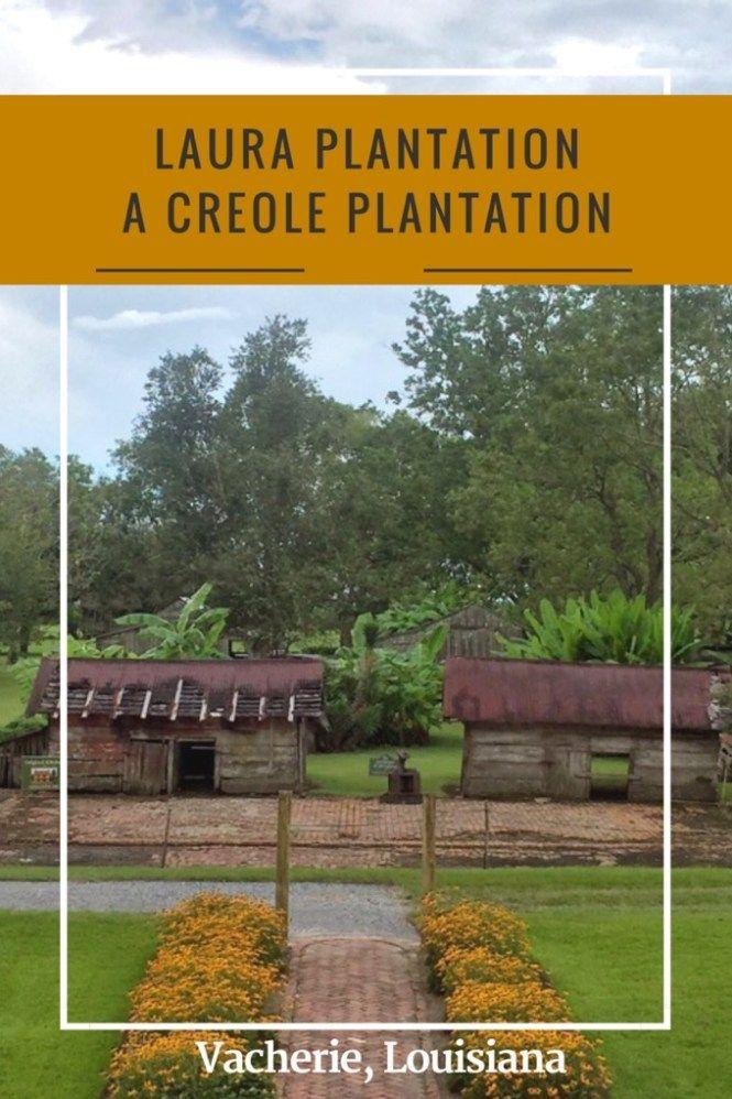 Pin on Plantations