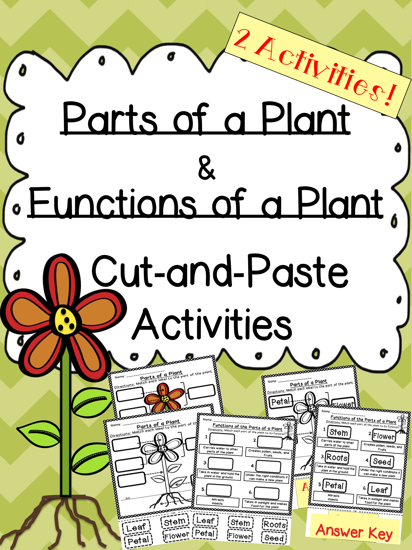 Plant Parts And Functions Cut And Paste Activities
