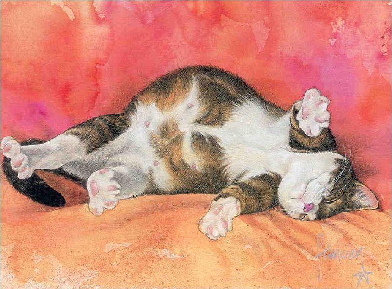 картинка кота иваныча вам необходим апидомик