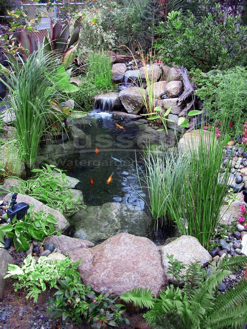 Small Waterfall Pond Landscaping For Backyard Decor Ideas 101 Gardenfountainsindoor Gardenpondideas Small Backyard Ponds Waterfalls Backyard Ponds Backyard
