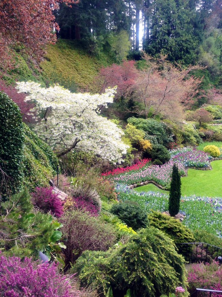 Celebrating Our Beautiful Earth Beautiful flowers garden