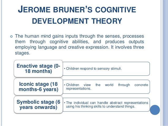 bruner cognitive development theory - Google Search Edu Education