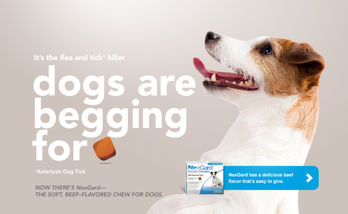 Nexgard Chewables For Puppies