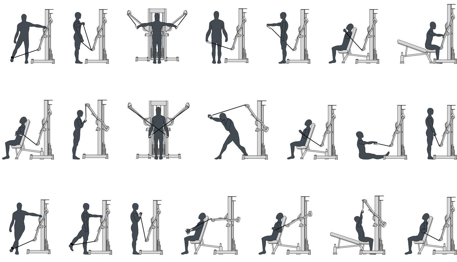 Tuff Stuff Exercise Charts
