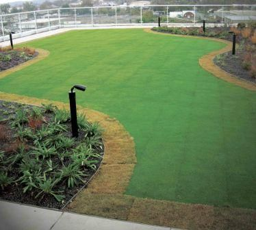 Vegetated Roofing Componentstremco Roofing Amp Building