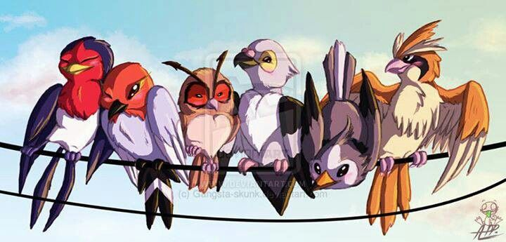 From left to right: Taillow, Fletchling, Hoothoot, Pidove, Starly, Pidgey.