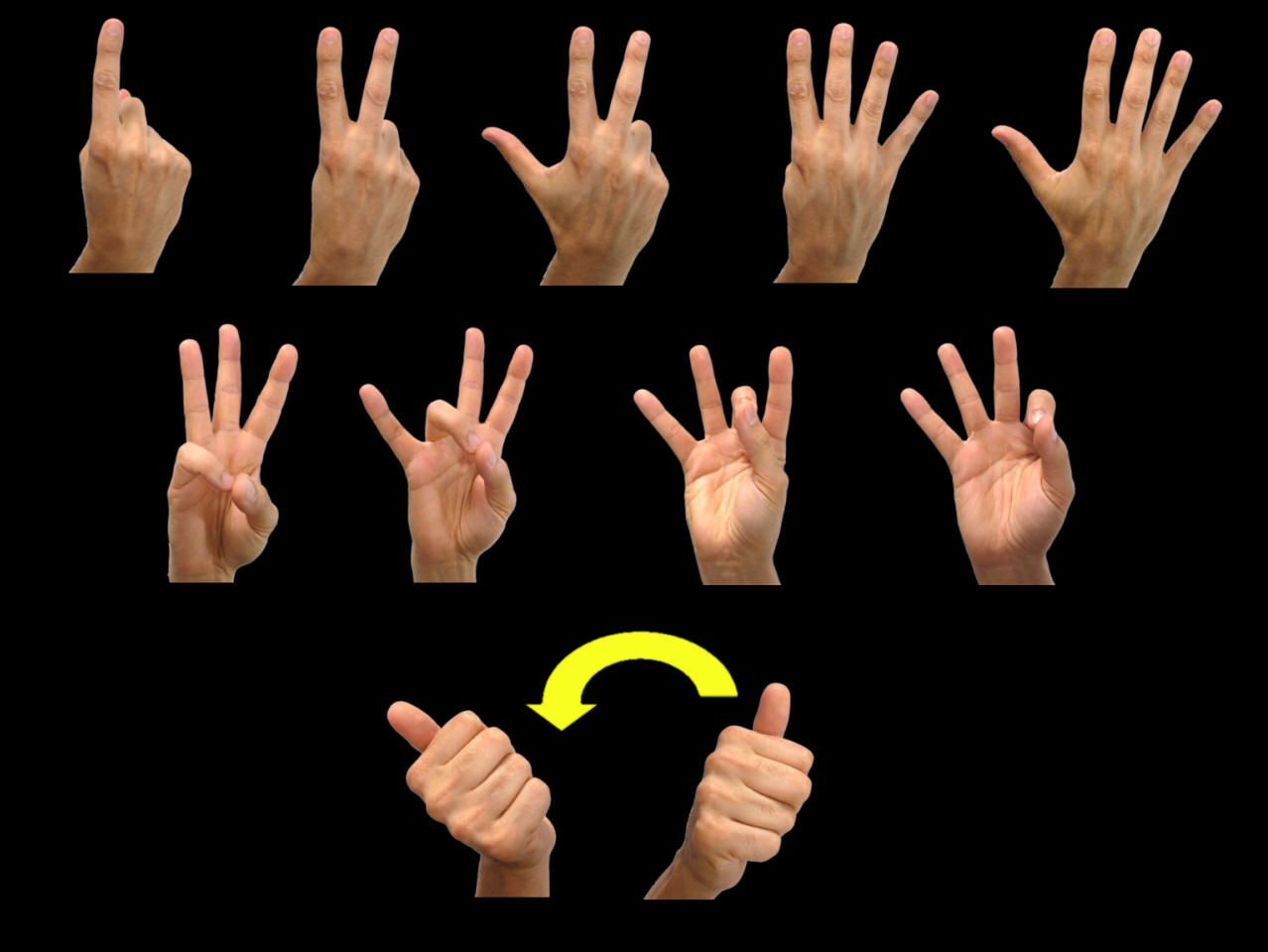 It is a picture of Lively Asl Numbers 1-20 Printable