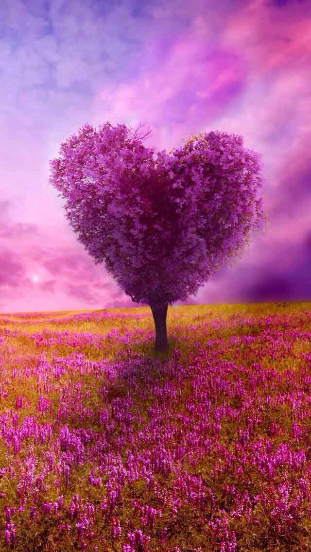 Wallpaper E Love Animation Wallpaper Beautiful Nature Heart Wallpaper