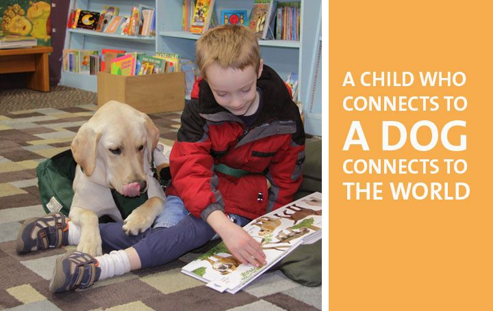 A Child Who Connects To A Dog Connects To The World Autism