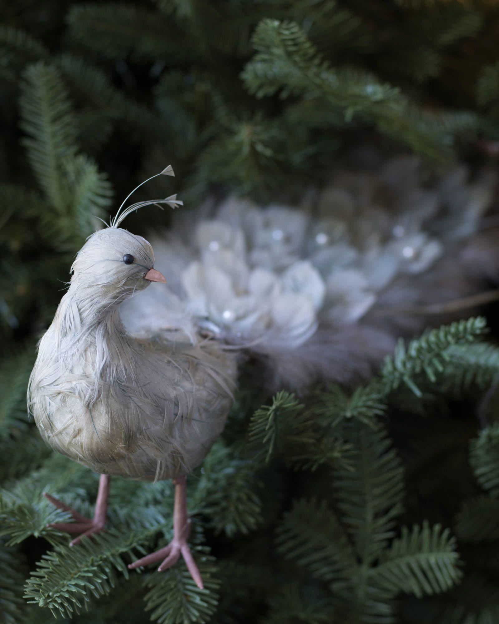 Winter Frost Decorative Bird