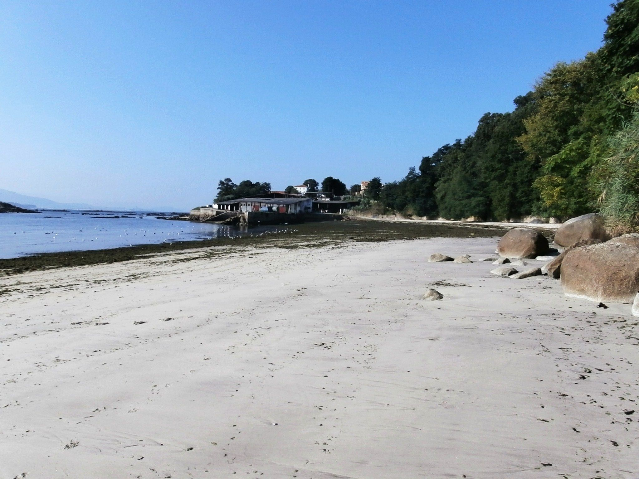 Playas De Os Alemáns Y O Canabal Ría De Vigo Galicia Playa Marea Viva Viajes