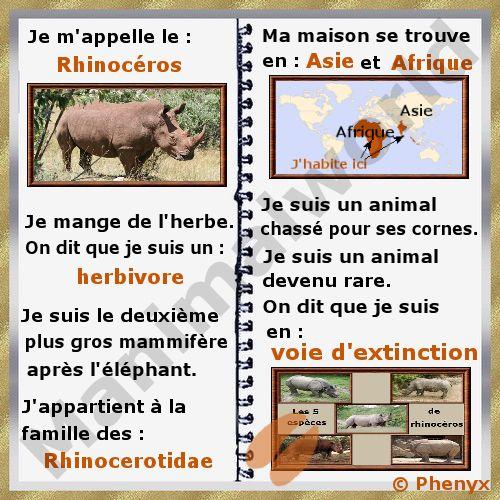 Le rhino carte d 39 identit edm pinterest edm for Carte virtuelle mon coin de jardin