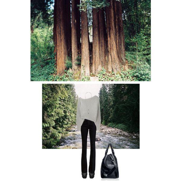 pants by ashbar on Polyvore featuring Alexander Wang, Rachel Zoe, Yves Saint Laurent and Wallis