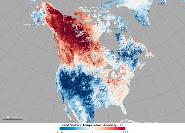 Insane Heat Wave in Alaska Put Temperatures Higher Than in Arizona  recordheat