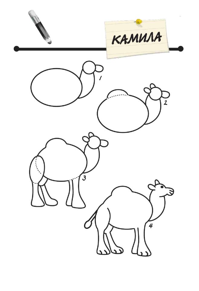 Aprende A Dibujar Un Camello Aprender A Dibujar Dibujo Paso A Paso Como Dibujar