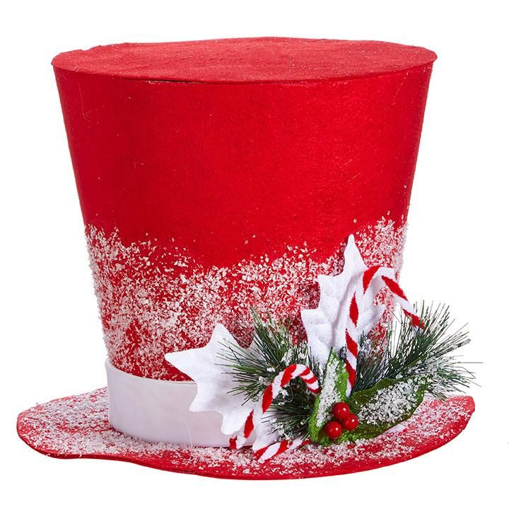 RAZ Top Hat Material: Polyester Size: 11.5